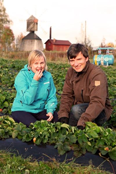 Karoliina ja Pauli Suutala luomumansikkamaalla